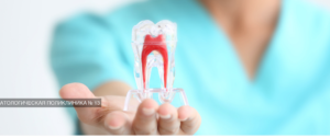 День открытых дверей филиала стоматологической поликлиники №51