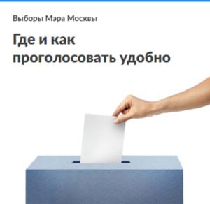 Где и как проголосовать удобно